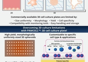 PAMCELL™ Infographic